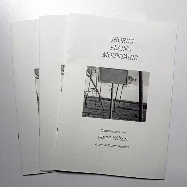 Shores / Plains / Mountains, conversazione con David Wilson